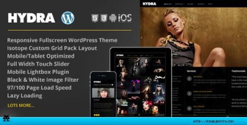 Hydra - Fullscreen Portfolio Grid Theme