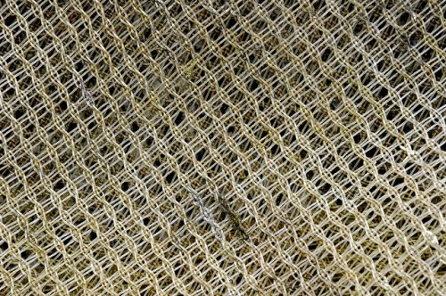 Netting Surface Texture