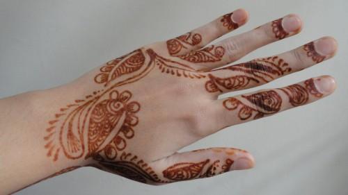 Back Hand Mehndi Art 2013