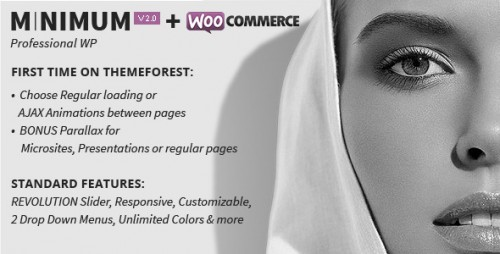 MINIMUM - Professional WordPress Theme