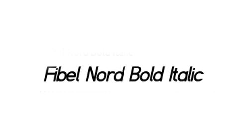 Fibel Nord Font Family