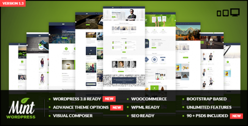 Mint - Responsive Multi-Purpose WP Theme