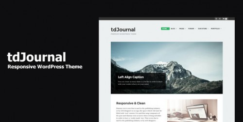tdJournal - Responsive WordPress Theme
